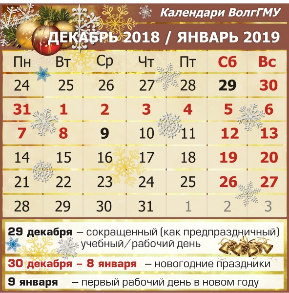 29 рабочий день 2019