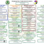структура студсовета 2019-2020
