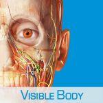 Тестовый доступ к 3D-атласу анатомии человека Visible Body