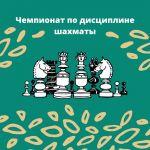 Чемпионат по дисциплине шахматы
