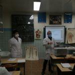 Хирургический клуб ВолгГМУ принял участие во Всероссийской конференции