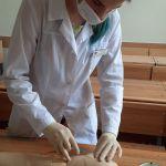 Студентка второго курса проводит подкожную инъекцию на фантоме